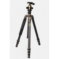 Baffulo Pro-80 Proffesional Carbon Tripod with Monopod (Black)